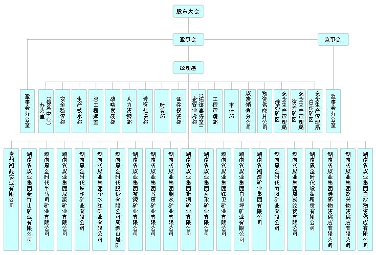 黑金时代股份有限公司组织结构图-湖南省煤业集团